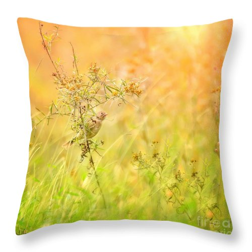 Aves Throw Pillow featuring the photograph Field Sparrow by Heather Hubbard