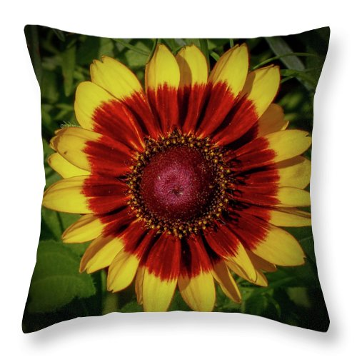 Firewheel Throw Pillow featuring the photograph Firewheel by Lora J Wilson