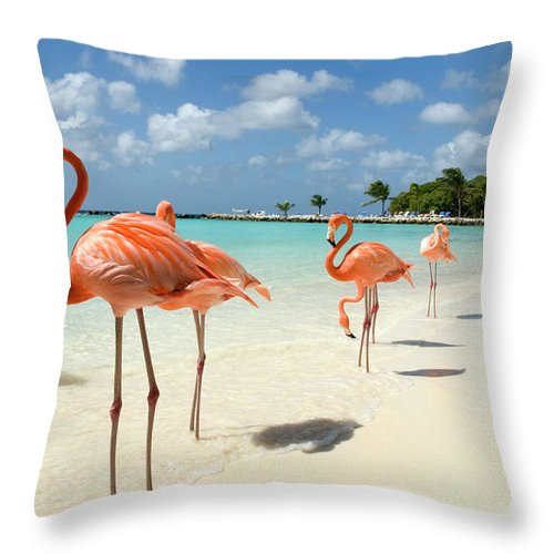 Shadow Throw Pillow featuring the photograph Flamingos On The Beach by Vanwyckexpress