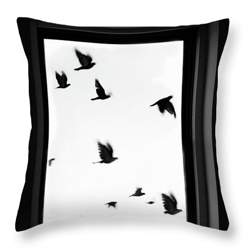 Spooky Throw Pillow featuring the photograph Flock Of Crows Seen Through A Window by Grant Faint