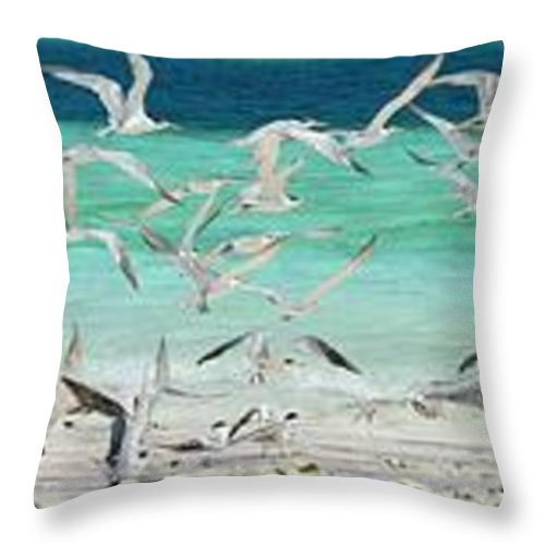 Scenics Throw Pillow featuring the photograph Flock Of Seagulls By Azure Beach by Christopher Leggett