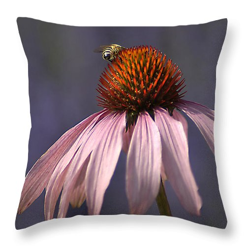 Insect Throw Pillow featuring the photograph Flower And Bee by Bob Van Den Berg Photography