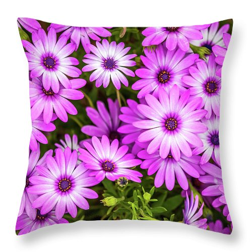 Flowers Throw Pillow featuring the photograph Flower Patterns Collection Set 04 by Az Jackson
