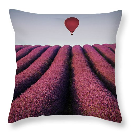 Shadow Throw Pillow featuring the photograph Flying High by Paul Baggaley