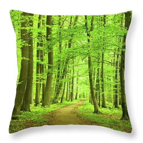 Curve Throw Pillow featuring the photograph Forest Path by Nikada