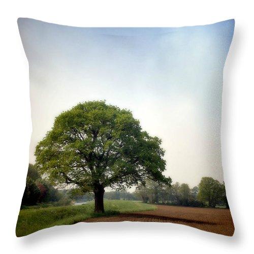 Scenics Throw Pillow featuring the photograph Garden Of Delights by Bob Van Den Berg Photography