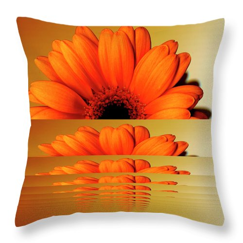 Orange Color Throw Pillow featuring the digital art Gerbera Flower As Rising Sun by Eversofine