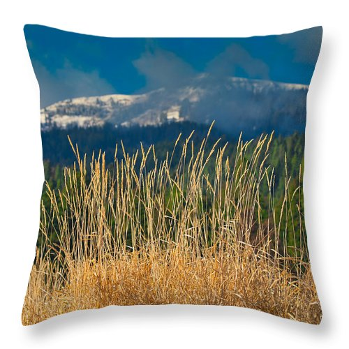 Mountain Throw Pillow featuring the photograph Gold Grass Snowy Peak by Tom Gresham