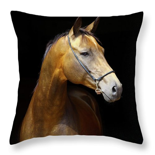 Horse Throw Pillow featuring the photograph Golden Horse by Photographs By Maria Itina