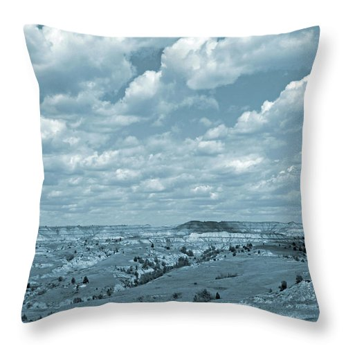 North Dakota Throw Pillow featuring the photograph Grasslands Shadow Dance by Cris Fulton