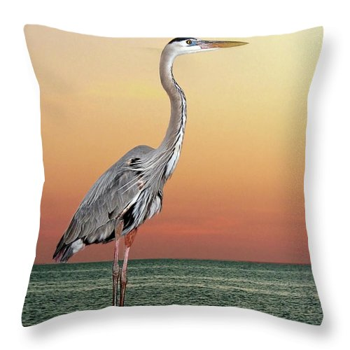 Scenics Throw Pillow featuring the photograph Great Blue Heron In Seaside Sunset by Melinda Moore