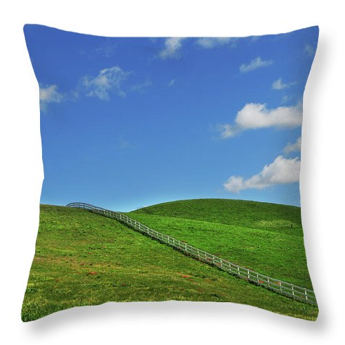 Scenics Throw Pillow featuring the photograph Green Hills And Fence by Mitch Diamond