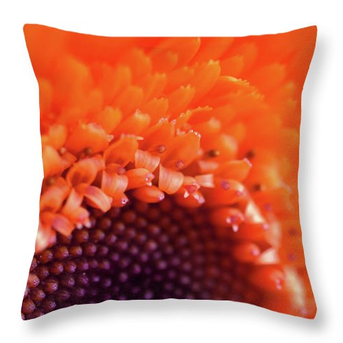 Marco Throw Pillow featuring the photograph Happy Colors by Tashina Van Zwam