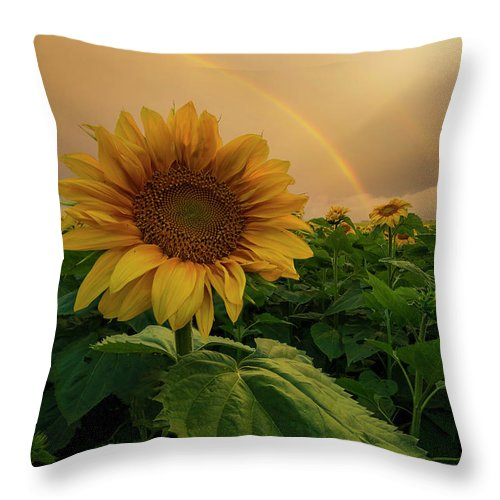 South Dakota Throw Pillow featuring the photograph Harmonious by Aaron J Groen