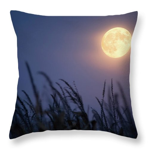 Sky Throw Pillow featuring the photograph Harvest Moon by Jimkruger
