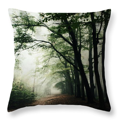 Scenics Throw Pillow featuring the photograph Haunted Forest by Bob Van Den Berg Photography