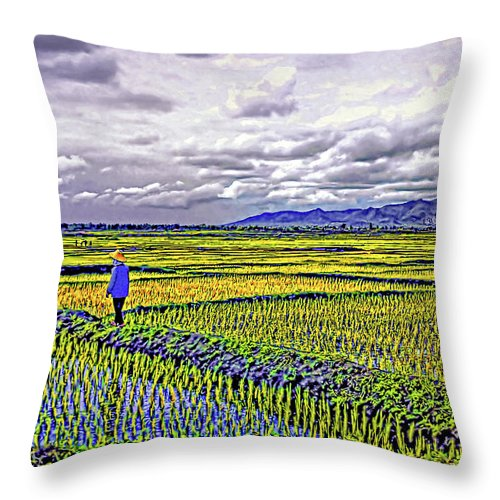Rice Throw Pillow featuring the photograph Heartland by Steve Harrington