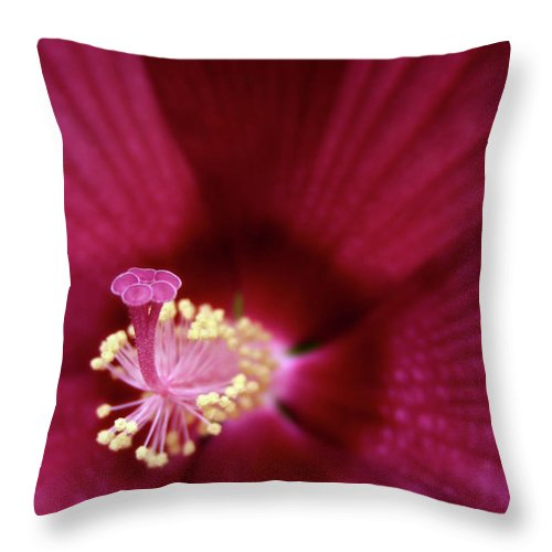 Macro Photography Throw Pillow featuring the photograph Hibiscus by Marie Leslie