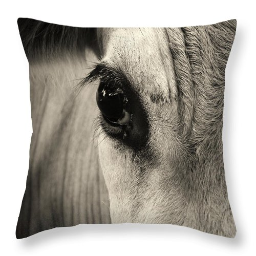 Horse Throw Pillow featuring the photograph Horse Eye by Karena Goldfinch