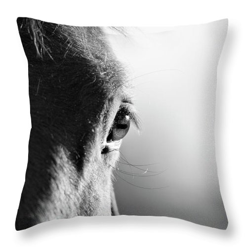Horse Throw Pillow featuring the photograph Horse In Black And White by Malcolm Macgregor