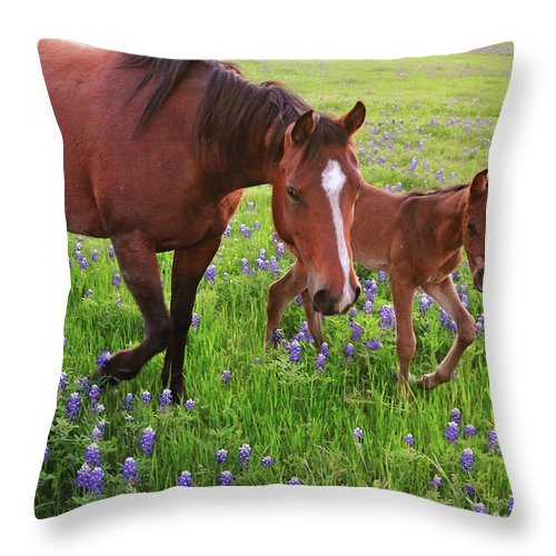 Horse Throw Pillow featuring the photograph Horse On Bluebonnet Trail by David Hensley
