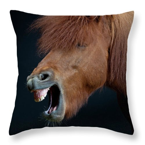 Horse Throw Pillow featuring the photograph Horse Showing Teeth, Laughing by Arctic-images