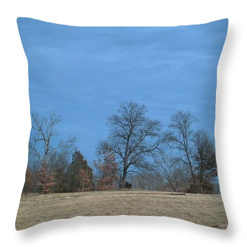 Summer Throw Pillow featuring the photograph Hot by Jeff Thomann