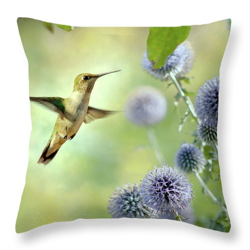 Animal Themes Throw Pillow featuring the photograph Hovering Hummingbird by Nancy Rose