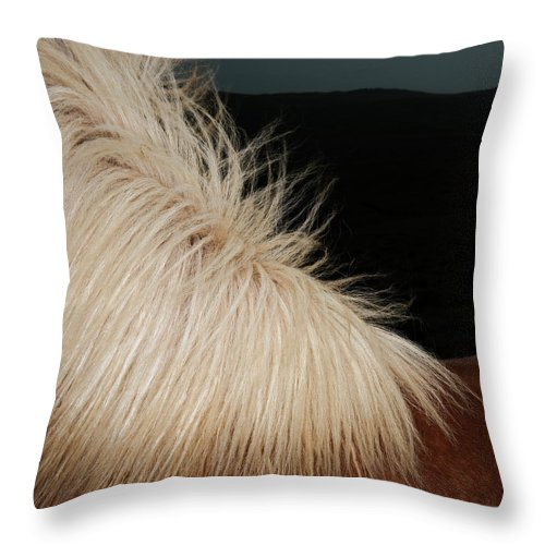 Horse Throw Pillow featuring the photograph Icelandic Horse by Roine Magnusson