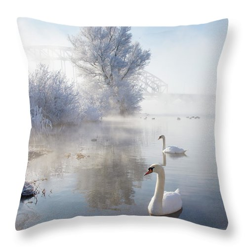 Snow Throw Pillow featuring the photograph Icy Swan Lake by E.m. Van Nuil