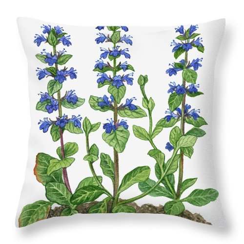 Watercolor Painting Throw Pillow featuring the digital art Illustration Of Ajuga Reptans Blue by Michelle Ross