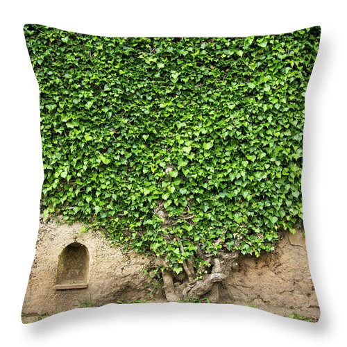 Arch Throw Pillow featuring the photograph Ivy On A Wall Of Villa Cimbrone, Ravello by Buena Vista Images