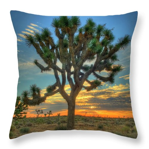 Scenics Throw Pillow featuring the photograph Joshua Tree At Sunrise by Photograph By Kyle Hammons