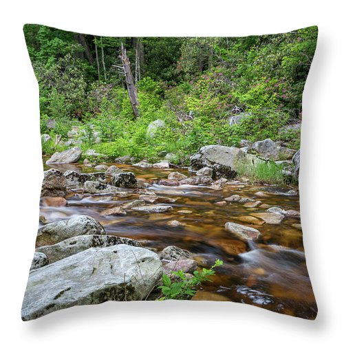 Hudson Valley Throw Pillow featuring the photograph June Morning At The Peterskill by Jeff Severson