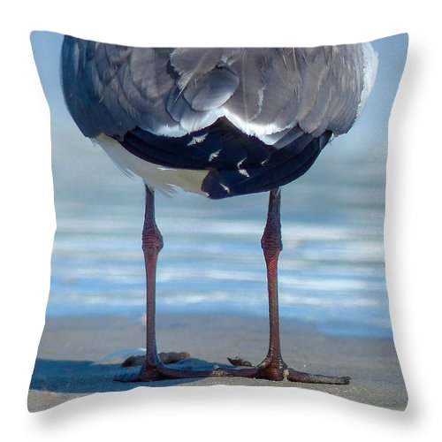 Seagull Throw Pillow featuring the photograph Knobby Knees by Rand