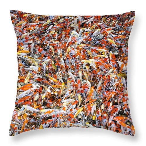 Pets Throw Pillow featuring the photograph Koi Jigsaw by Chris Edwards
