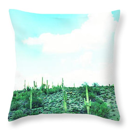 Lake Boat Boating Saguaro Cactus Throw Pillow featuring the photograph Lake Pleasant Az 047b by George Arthur Lareau