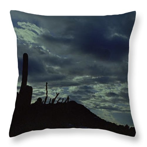 Lake Boat Boating Saguaro Cactus Throw Pillow featuring the photograph Lake Pleasant Az 050a by George Arthur Lareau