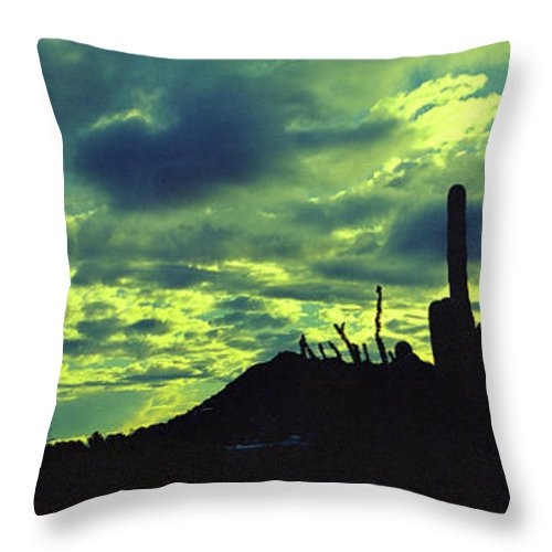 Lake Boat Boating Saguaro Cactus Throw Pillow featuring the photograph Lake Pleasant Az 052a by George Arthur Lareau