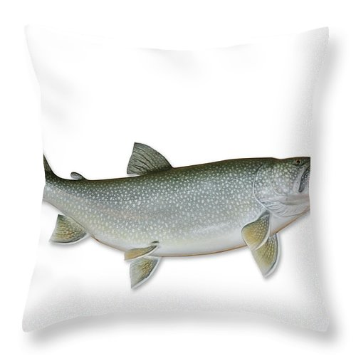 White Background Throw Pillow featuring the photograph Lake Trout With Clipping Path by Georgepeters