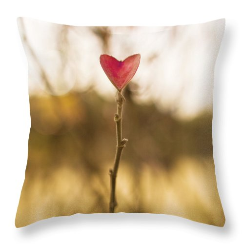 Outdoors Throw Pillow featuring the photograph Leaf In Heart Shape by Twomeows
