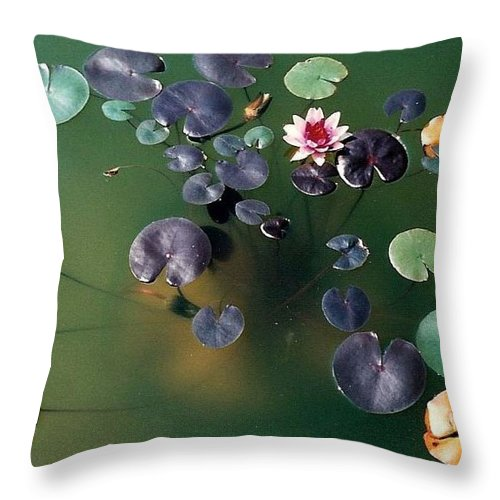 1980-1989 Throw Pillow featuring the photograph Lillypad by Margherita Wohletz