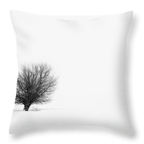 Tranquility Throw Pillow featuring the photograph Lone Tree by Jrj-photo