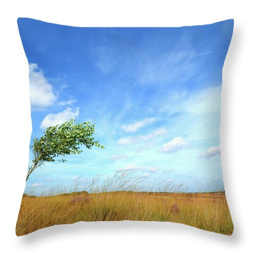 Scenics Throw Pillow featuring the photograph Lonesome Tree Swept By The Wind by Nikitje