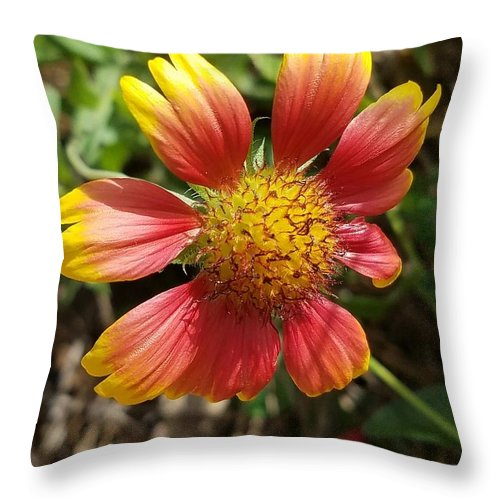 Throw Pillow featuring the photograph Love of My Life by Gewanda Parker