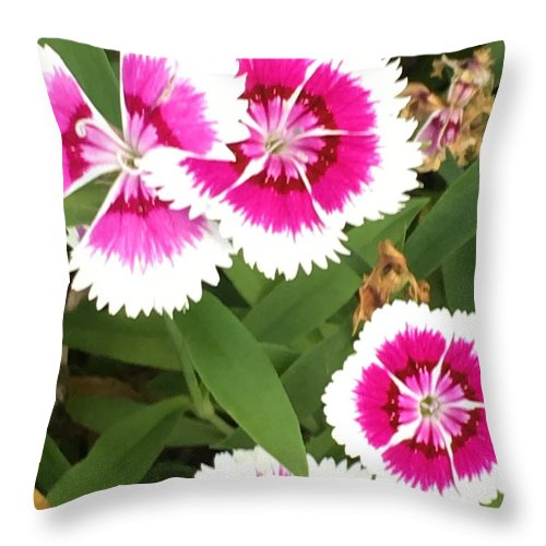 Throw Pillow featuring the photograph Love you by Gewanda Parker