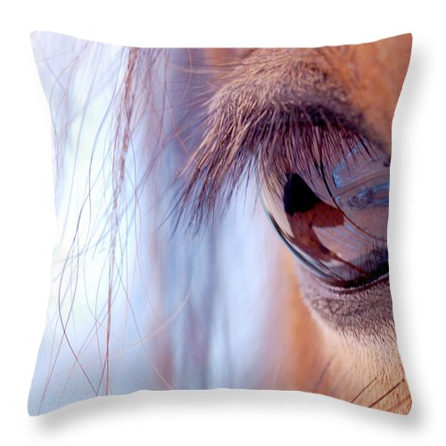 Horse Throw Pillow featuring the photograph Macro Of Horse Eye by Anne Louise Macdonald Of Hug A Horse Farm