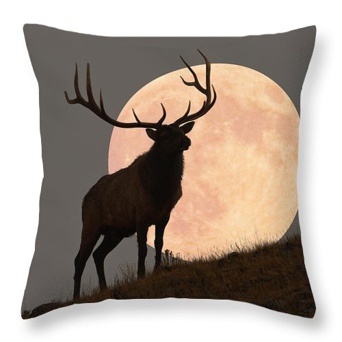 Horned Throw Pillow featuring the photograph Majestic Bull Elk And Full Moon Rise by Mark Miller Photos