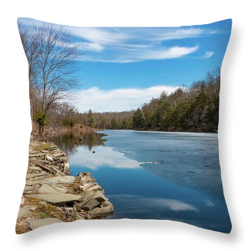 Hudson Valley Throw Pillow featuring the photograph March Morning at Sanctuary Pond by Jeff Severson