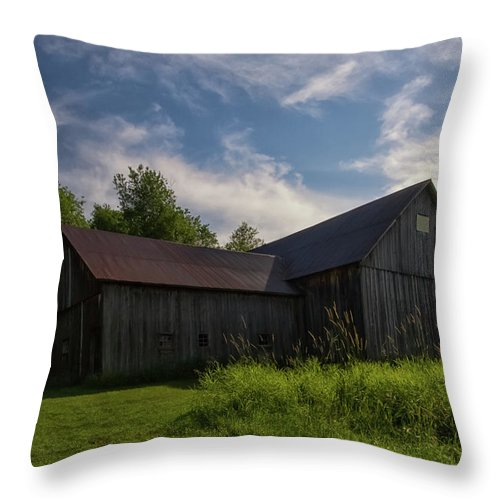 Port Throw Pillow featuring the photograph Miller Barn 5 by Heather Kenward